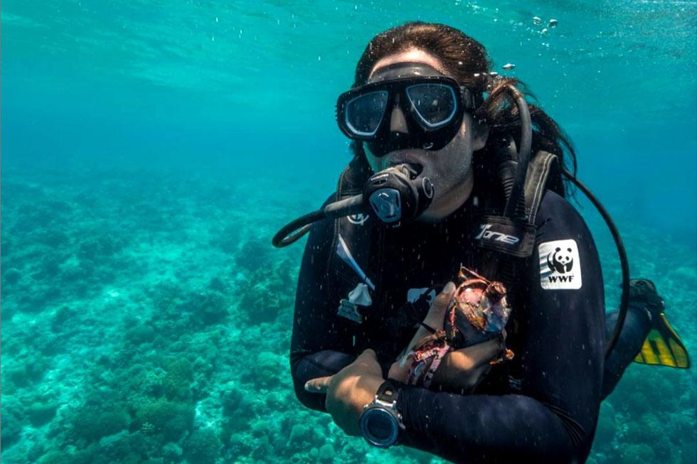 Ranny Ramadhani, Alumni Ilmu Kelautan FPIK UNDIP Diakui DIVE Magazine Sebagai Women in Conservation
