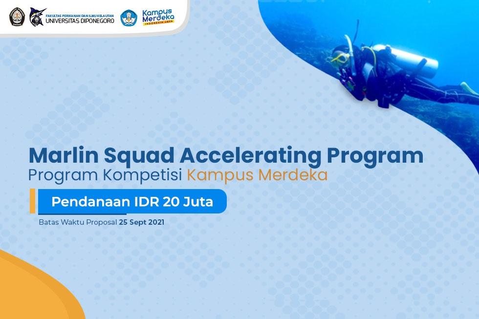 We are Opening Marlin Squad Accelerating Program 2021